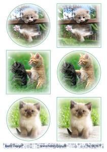 Bilde av Barto Design - Klippeark A4 - 067877 - Kittens