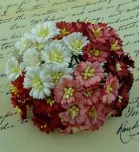 Bilde av Flowers - Cosmo Daisy Flowers - SAA-251 - Mixed Red/White - 50st