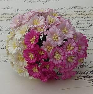 Bilde av Flowers - Cosmo Daisy Flowers - SAA-148 - Mixed Pink/White - 50s