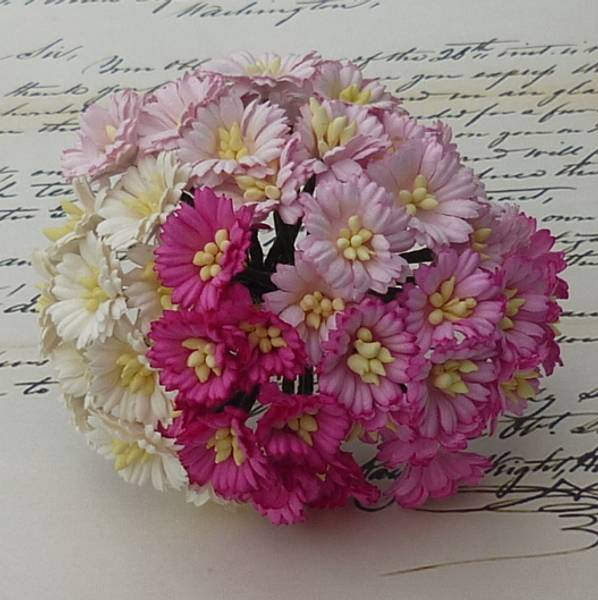 Flowers - Cosmo Daisy Flowers - SAA-148 - Mixed Pink/White - 50s