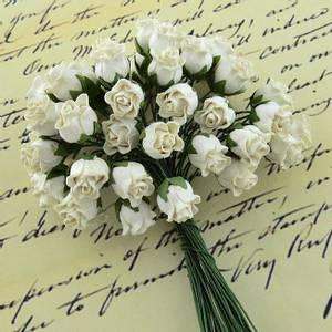 Bilde av Flowers - Hip Rosebuds - SAA-464 - Ivory - 50stk
