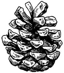 Bilde av Reprint - Stempel - 3089 AA - Umontert - Kotte 2 (mini)