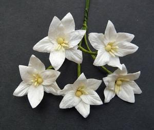 Bilde av Flowers - Lily Flowers - SAA-139 - White - 50stk