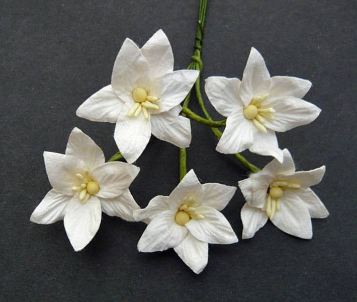 Flowers - Lily Flowers - SAA-139 - White - 50stk