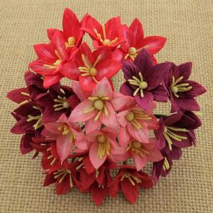 Bilde av Flowers - Lily Flowers - SAA-330 - Mixed Red - 50stk