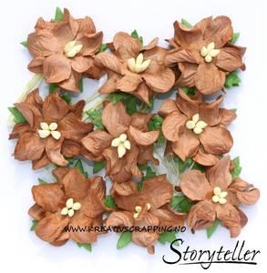 Bilde av Storyteller - Gardenia små - Brun - 3559