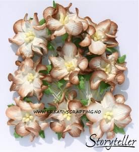 Bilde av Storyteller - Gardenia små - Brun kant - 3504