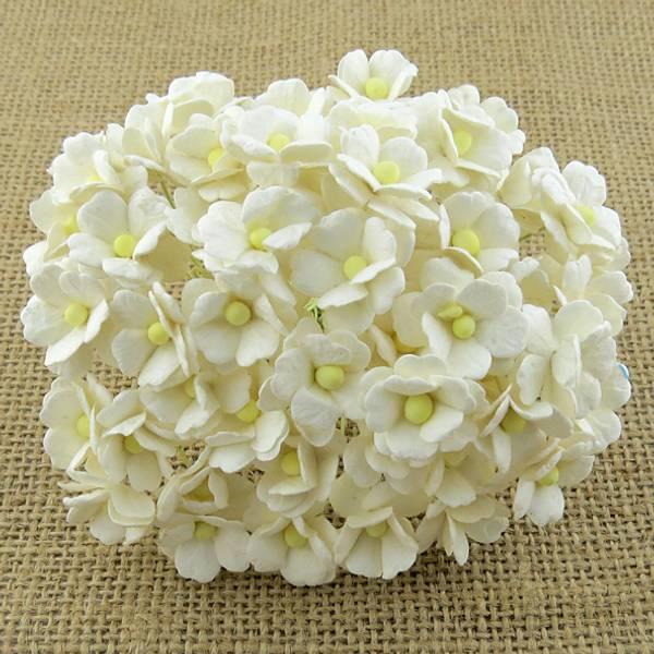 Flowers - Sweetheart Blossom - SAA-353 - Ivory - 100stk