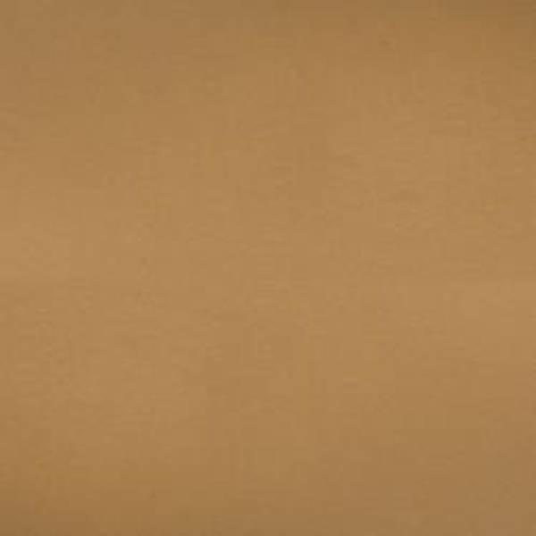 Bazzill - Smoothies - T0069 - Dark Kraft - 300027