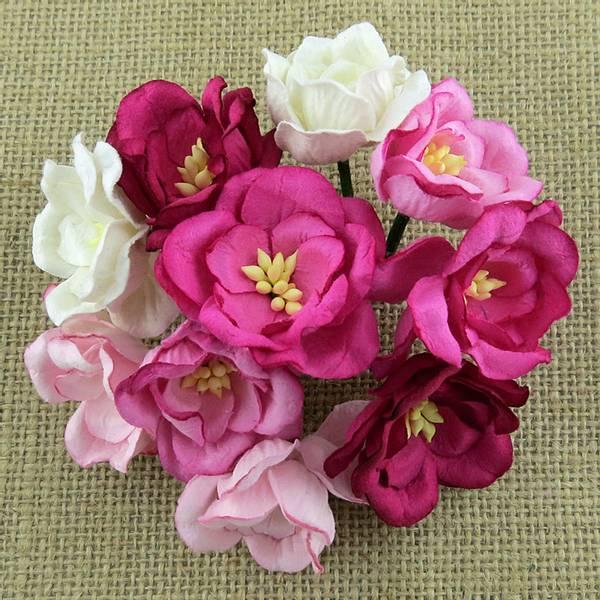 Flowers - Magnolias - SAA-421 - Mixed Pink - 50stk