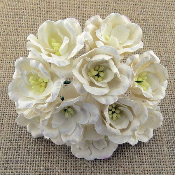 Flowers - Magnolias - SAA-362 - White - 50stk