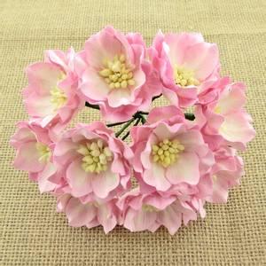Bilde av Flowers - Lotus - SAA-315 - 2-Tone Pink/Ivory - 25stk