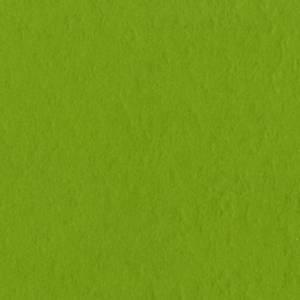 Bilde av Bazzill - Fourz (Grass Cloth) - 19-5381 - Intense Kiwi