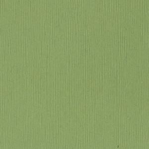 Bilde av Bazzill - Fourz (Grass Cloth) - 5-5102 - Lily Pond