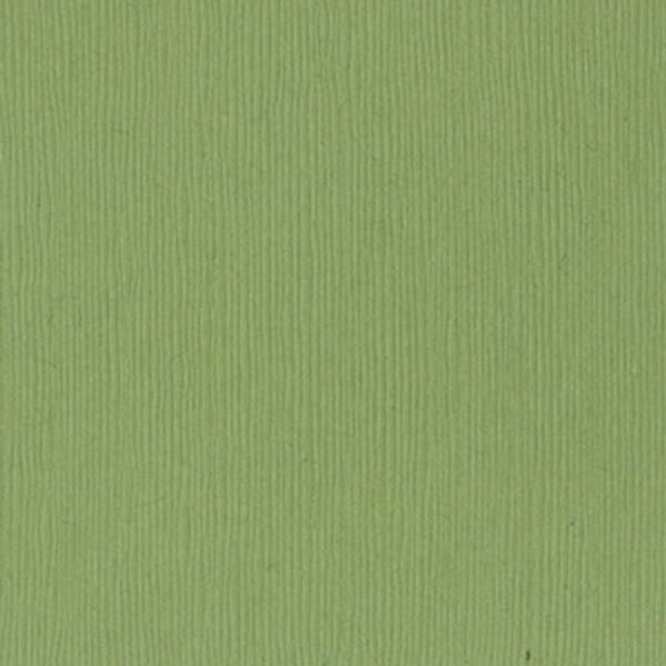 Bazzill - Fourz (Grass Cloth) - 5-5102 - Lily Pond