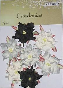 Bilde av Reprint - Paper Flowers - Gardenia - Winter