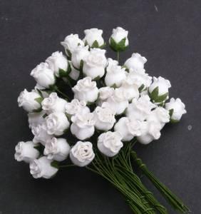 Bilde av Flowers - Hip Rosebuds - SAA-091 - White - 50 stk