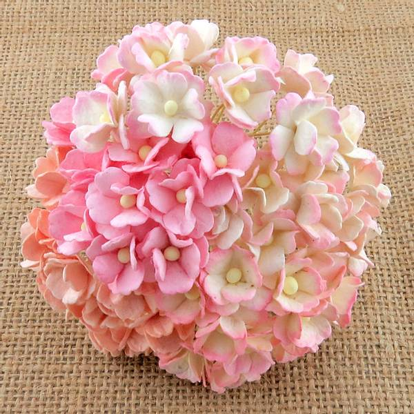 Flowers - Sweetheart Blossom - SAA-331 - Mixed Pink - 100 stk