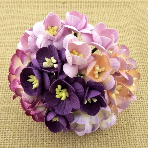 Flowers - Cherry Blossom - Saa-245 - Mixd Purple / Lilac - 50stk