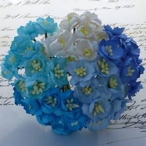 Bilde av Flowers - Cherry Blossom - Saa-247 - Mixed Blue / Aqua - 50stk