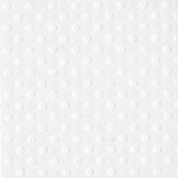 Bazzill - Dotted Swiss - 10-1047 - Salt - 300505