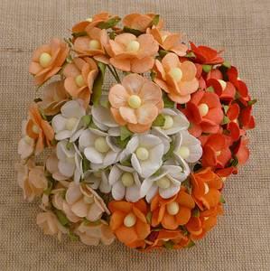 Bilde av Flowers - Sweetheart Blossom - SAA-334 - Peach/Orange & White