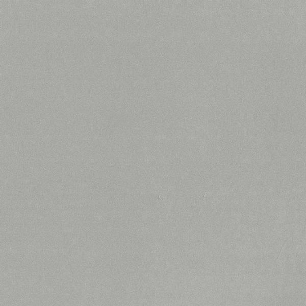 Bazzill - Foil Cardstock - 12x12 - 300280 - Matte Silver