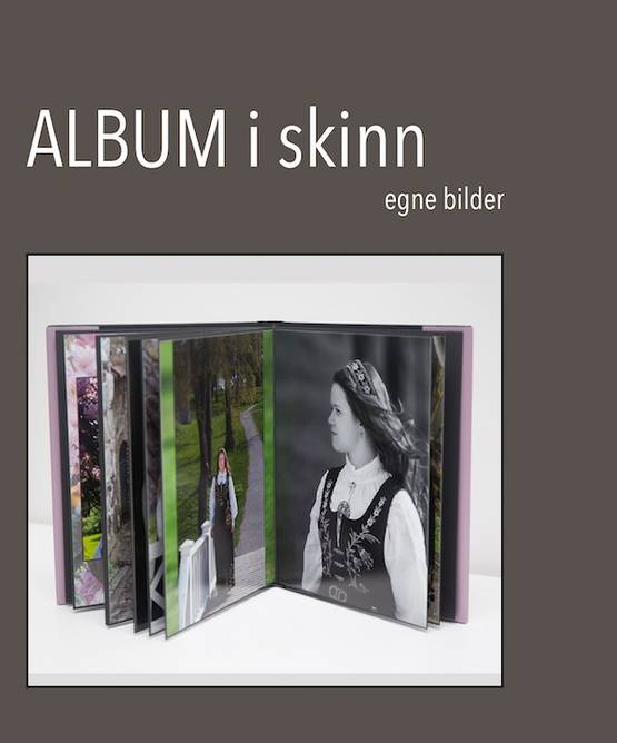 Bilde av Album i skinn (egen bilder)