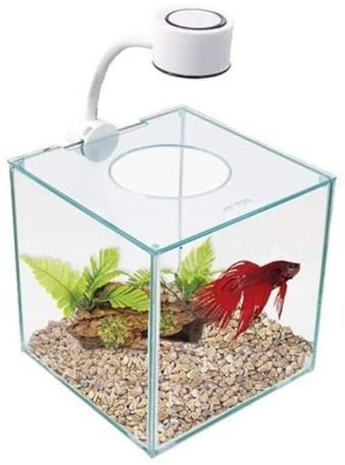 Bilde av Små Akvarier
