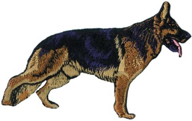 Bilde av Schæferhund stående,