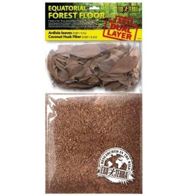 Bilde av Equatorial Forest Floor