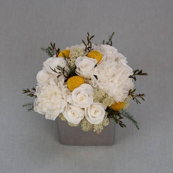 Bilde av Preserverte roser Snow