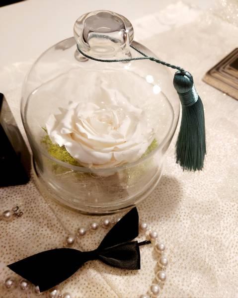 Bilde av Bevart rose i glasskrukke hvit (champagne)