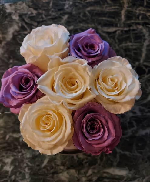 Bilde av Preserverte roser Lillac & White