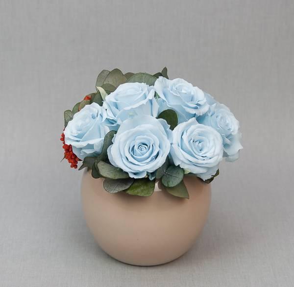 Bilde av Preserverte roser Ronda Blue