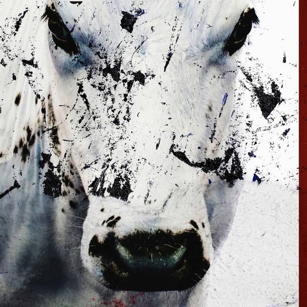 Bilde av Cow 20 x 20 cm Nr 11