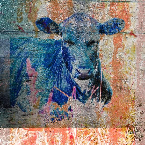 Bilde av Cow 20 x 20 cm Nr 22