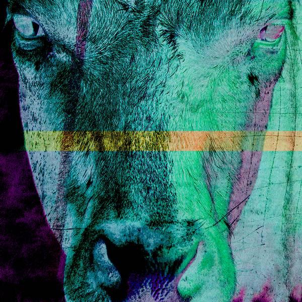 Bilde av Cow 20 x 20 cm Nr 31