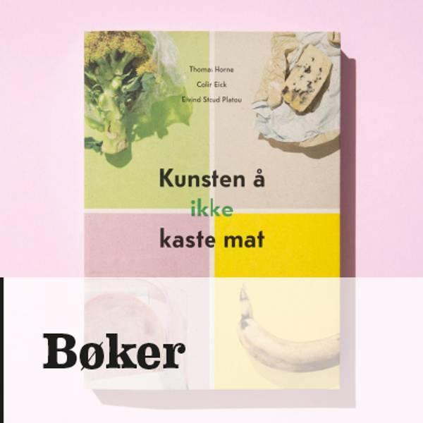 Bøker i nettbutikken til Kunst og kaos på Røros