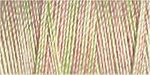 Sulky Cotton 30 - 4048