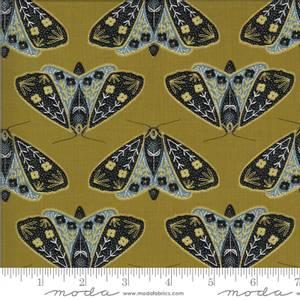 Bilde av Dwell sommerfugler