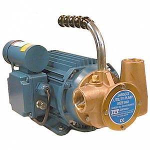 Bilde av Jabsco lense/flytte pumpe 80L/min 220v 53080-2003