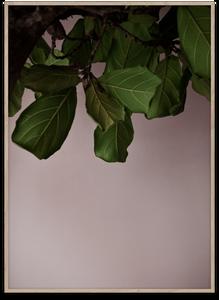 Bilde av Green Leaves 50x70 cm