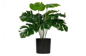Bilde av Montsera artificial plant green 40cm
