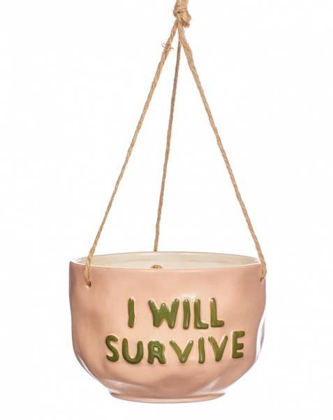 Bilde av I Will Survive - Hengende
