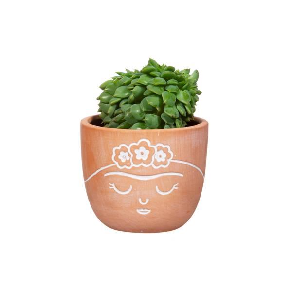 Bilde av Frida Terracotta Mini Planter