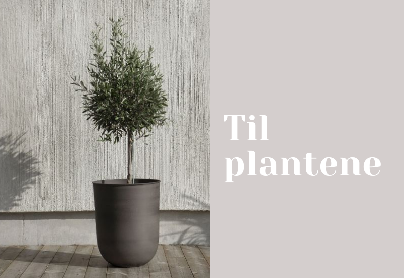 Fine ting til plantene.
