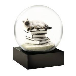 Bilde av COOLSNOWGLOBES  | White Cat on Books