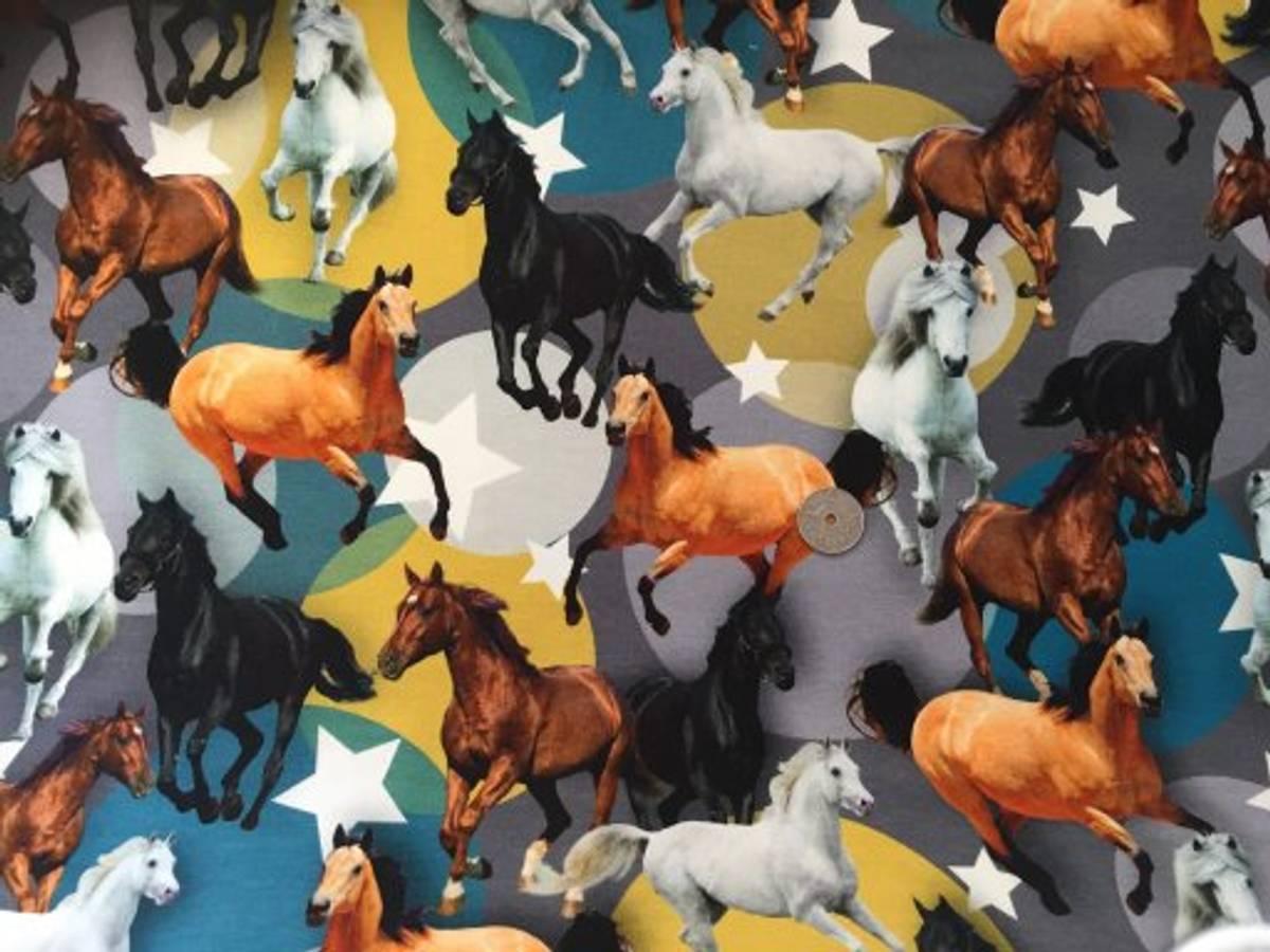 40 cm - Hester - Stjerner og prikker
