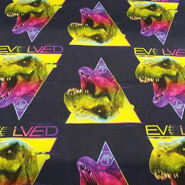 Bilde av Dinosaur Evolved